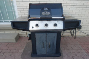 Natural gas BBQ for sale