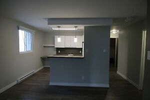 Newly renovated 1 Bedroom Apartments