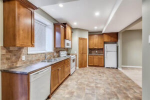 1BR Basement Suite in Silver Valley Maple Ridge $1,100