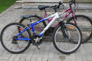 Two bikes, Only $50 for both