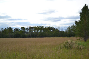 Vacant Land with CR5 Zoning, 10 Minutes West of Grande Praire