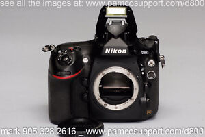 Nikon D800 with ikelite 6812.8 & DL 8 & DS161