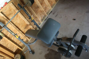 WEIGHT BENCH, WEIGHTS, AND BARS - SUSSEX