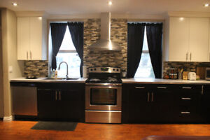 Completely Renovated 2 Bedroom Apartment- Available May1/18