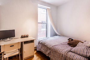 Roommate Wanted - McGill Ghetto (Durocher and Prince Arthur)