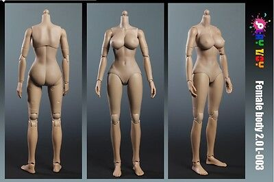 Play Toy 1 6 Scale 12  Caucasian Female Large Bust Body Version 2 0 Doll 003 L