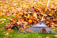 FALL CLEAN UP AND LANDSCAPING