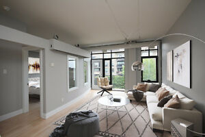 Contemporary & Elegant 300 Powell Ave #307