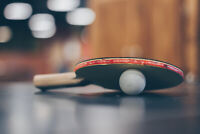Looking for table tennis partner