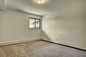 Spacious Pet Friendly 2 Bdrm only $949! Ground Floor -Huge Patio