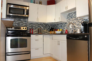 Fully Renovated Furnished Riverview Condo in Hintonburg/Westboro