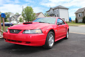 2004 Ford Mustang SUPER LOW KM's!!