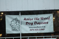 Raise the Woof; Doggy Daycare located off of Commercial