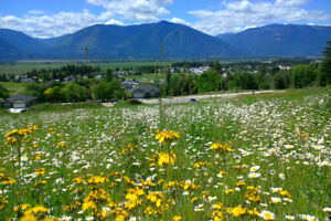 Creston BC View Lots for Sale