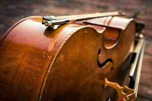 Classical Musicians for Hire Cambridge Kitchener Area image 1