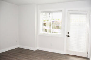 May 1st/15th - One Year Old Bright Cozy 1 Bedroom Basement Suite