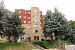 Beautiful waterfront executive condo with breathtaking lakeview