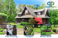 Tree Pruning/Removal, Hedges, Mulch Beds - Professionals