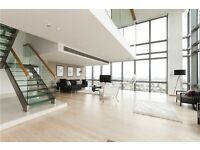 E14 Canary wharf Fabulous Duplex Penthouse 2 Large Bedroom with Stunning Roof Terrace