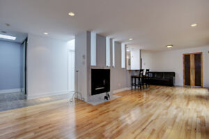 Amazing Penthouse Condo-Large 2bed/2bath-Downtown McGill Plateau