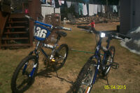 BMX bikes NEVER USED 60.00 each or 2 for 100.00