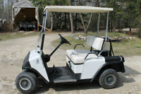 E-Z- GO Golf Cart with Heavy Duty Custom Made Storage Cover
