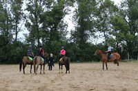2 summer positions work in exchange for lessons and riding