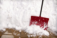 SNOW REMOVAL FOR A GREAT PRICE