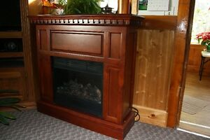 Fire place - used very little, in awesome condition.  Not using Stratford Kitchener Area image 1