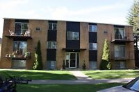 """Close to the University """"Month to Month"""" Great Eastside Location"""