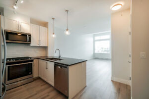 BRAND NEW 2 BEDROOM + 2 BATH CONDO +1ST YEAR FREE CABLE/INTERNET