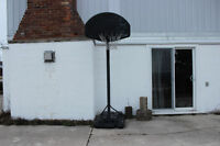 FULL SIZE ALL WEATHER BASKETBALL NET/STAND - COLLINGWOOD