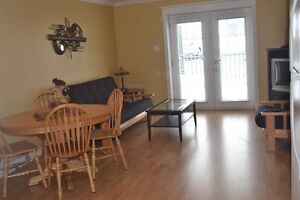 Downtown/PET FRIENDLY/wheelchair accessible/furnished