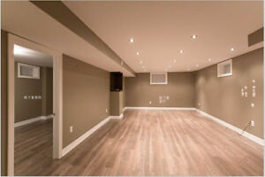 Amazing spacious basement for rent in upscale area