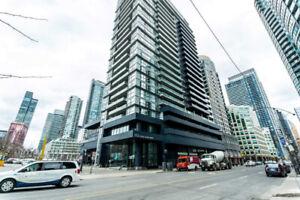 1 Bedroom condo in Downtown Toronto