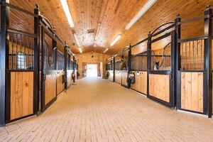 Con Brio Equestrian Farm - 100 Acres - Denfield & Medway Road London Ontario image 3