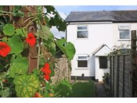 1 Bedroom Cottage in Honiton Town Centre - Available to Rent Immediately
