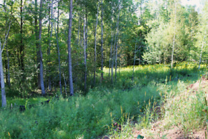 Looking for a few acres of land to build a hunting camp
