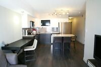Sleek, Modern, New Condo.  2bed, 2 full bath