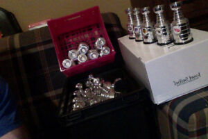 Mini Stanley Cups complete set