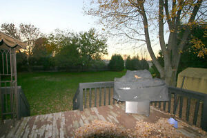 STONEY POINT UPDATED RANCH On HUGE LOT Windsor Region Ontario image 4