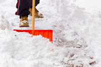 Driveway Snow Removal Shovelling available $15-20