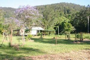 Wwoofing! Young family is looking for wwoofers! ( ongoing add) Nimbin Lismore Area Preview
