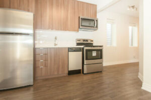 Modern 2 Bedroom Newly Renovated! 90 Transit Score!