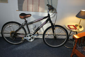 2 adult NORCO bicycles