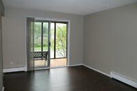 Renovated Large 1 BR Apartment Close to U of C Available July1