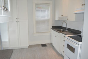 Cathedral one bedroom, Walk to downtown, New renovation