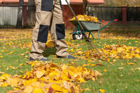 Book your Fall Leaf and Property Clean-Up Now!