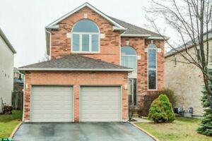 Luxury and Newly Renovated Basement Apartment for Rent Ajax