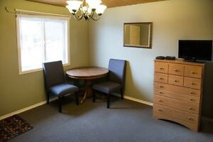 No Lease $775.00/month, One Person, fully furnished  Edmonton Edmonton Area image 4